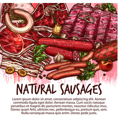 Sketch sausages and meat delicatessen vector