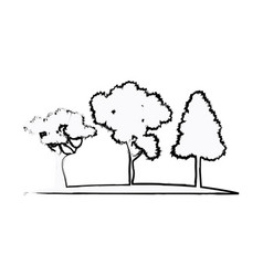 Trees plant natural forest image sketch vector
