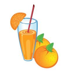 orange fruit juice vector image