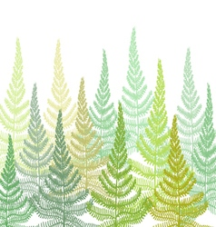 Hand drawn decorative pattern with fern vector
