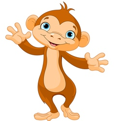 Baby monkey vector image