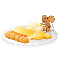 biscuits cheese and mouse vector image