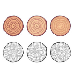 Natural tree rings background saw cut tree trunk vector