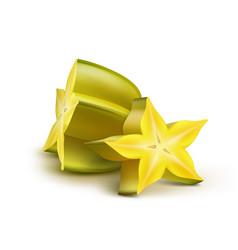 sliced yellow carambola vector image vector image