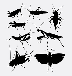 Grasshopper and cricket insect animal silhouette vector