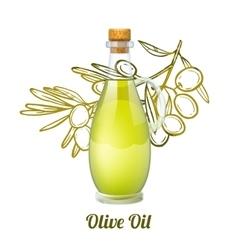 Olive Oil Sketch Concept vector image