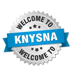 Knysna 3d silver badge with blue ribbon vector
