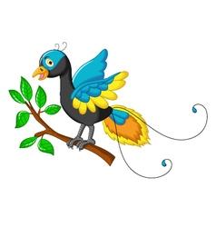 Cute paradise bird cartoon vector