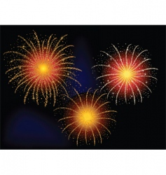 firework explosion vector image vector image
