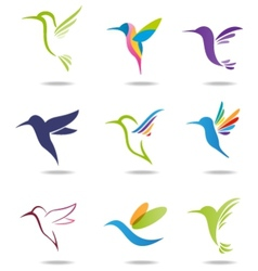 Hummingbird logo vector