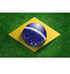 Soccer ball with brazilian flag on soccer field vector