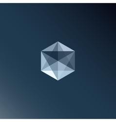 Transparent cub vector image