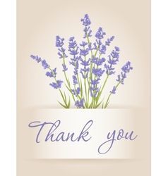 Thank you card with lavender vector