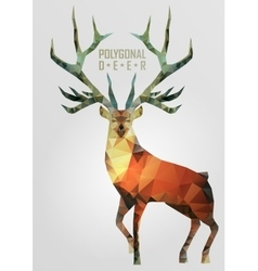 Abstract polygonal deer vector image