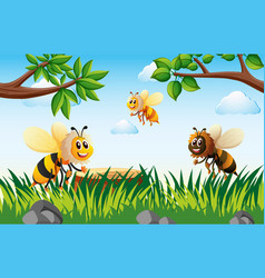 Bees flying in garden at daytime vector