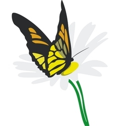 Butterfly on flower 02 vector image