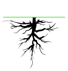 Tree Root vector image