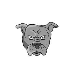 Angry bulldog head cartoon vector