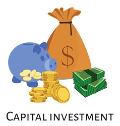 Capital investment vector