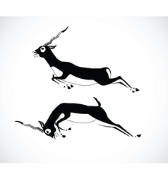 deer 4 vector image vector image