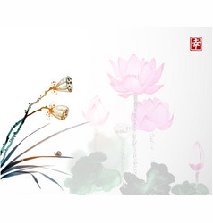 dry lotus seed heads and lotus flowers on vector image vector image