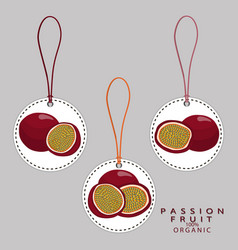 The passion fruit vector