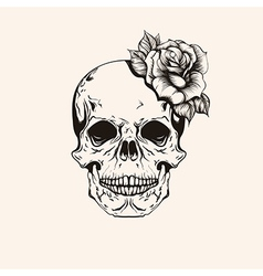 Hand drawn sketch scull with rose tattoo line art vector