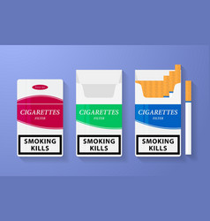Icon of cigarette pack the open empty and closed vector