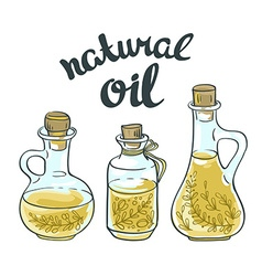 Set of bottles with linseed and olive oil isolated vector