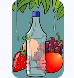 sweet fruit vector image vector image