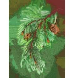 Watercolor coniferous branch with pine cones vector image