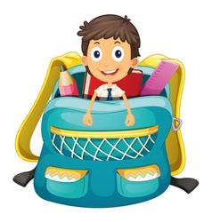 boy in bag vector image
