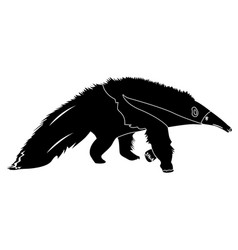 Isolated anteater silhouette vector