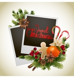 Christmas card with coniferous design vector
