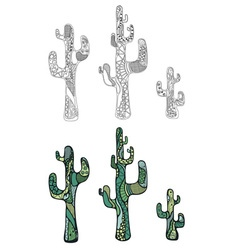 Cactus painted in doodle style vector