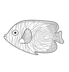 Fish sketch doodle style hand drawing fish vector