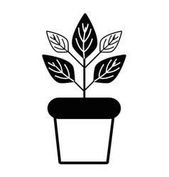 contour plant inside flowerpot to ecology vector image vector image