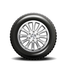 single car tire vector image vector image
