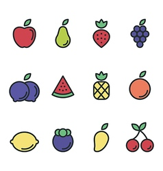 Fruit icon set flat design isolated vector
