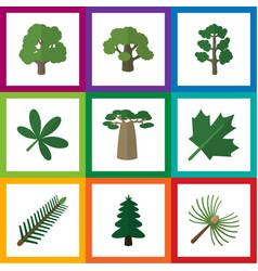 Flat icon nature set of spruce leaves rosemary vector