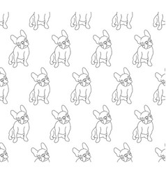 french bulldog on white background vector image