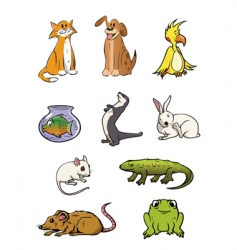 pets collection vector image vector image