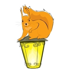 Squirrel and lantern vector image
