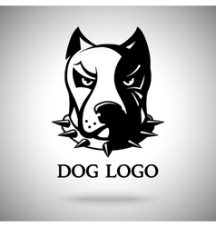 dark dog head in spiked collar template vector image vector image