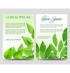 Spring flyers template with green leaves vector image vector image