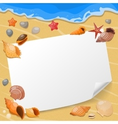 Shells And Sea Stars Composition vector image