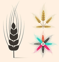 Ears of wheat set vector