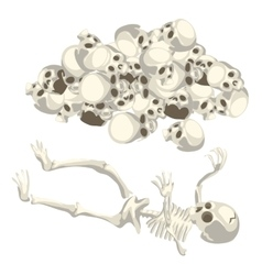 Human skeleton and pile of skulls isolated vector