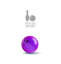 Bowling bowl isolated on the white as design vector image