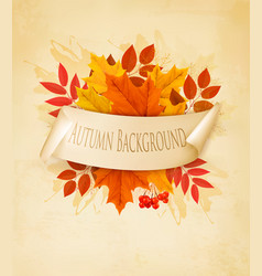 vintage nature autumn background with colorful vector image vector image